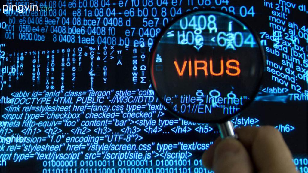 В ногу со временем: в Одессе участились хакерские атаки и киберпреступления