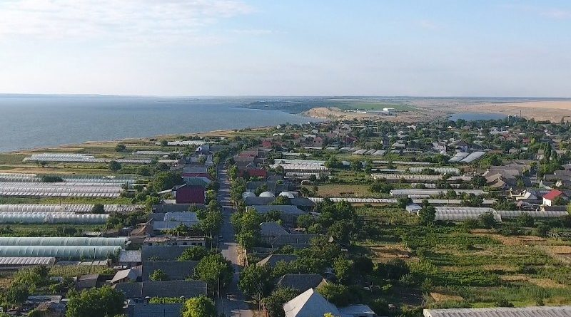 В самом крупном селе Измаильского района подтверждена вспышка АЧС