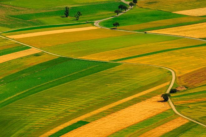 В правительстве назвали минимальную стоимость гектара земли после открытия рынка: ее закрепили в законе