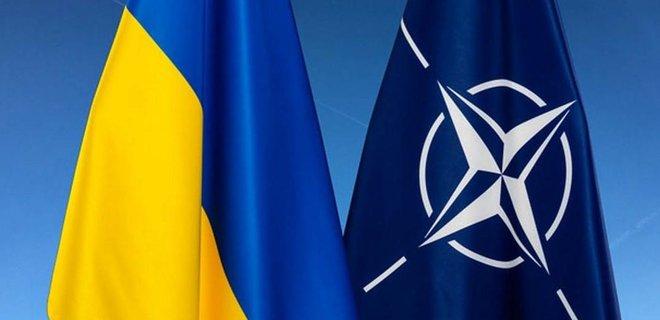 Зеленский разрешил пустить в Украину войска НАТО